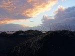 Islandia-playa de lava negra