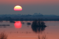 Sunset in Tablas de Daimiel National Park (Spain)