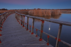 Twilight in Tablas de Daimiel National Park (Spain)