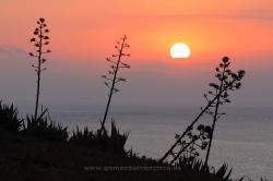 Amanecer en el Parque Natural del Estrecho (Cádiz)