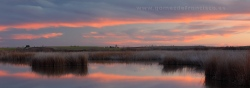 Sunset at Daimiel National Park (Ciudad Real)