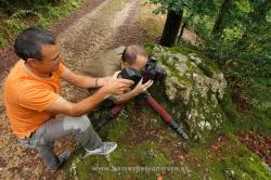 Photographing fire salamander (S. salamandra). Spain