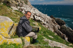 Photographing gannets (Morus bassanus). Ireland