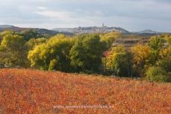 Briones, La Rioja (Spain)