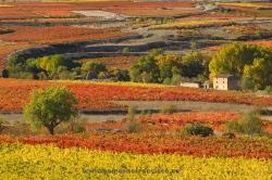 San Asensio, La Rioja (Spain)