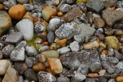 Detalle de una playa de piedras. Svalbard