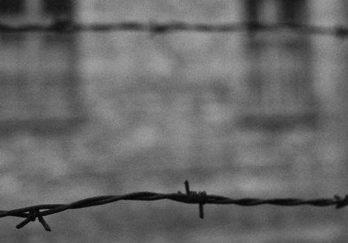 La crueldad de Auschwitz