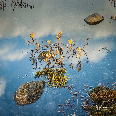 Miradas de un seductor - SáezCarabal, Landscape Photography