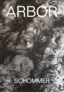 Alberto Sommer-Arbor