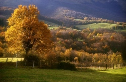 report: Orduña (Bizkaia) - Title: autumn