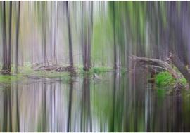 "portfolio: ""Impressionisms"" title: ""Homage to Sorolla"""