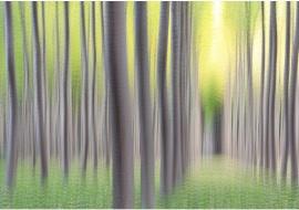 """portfolio: """"Impressionisms"""" title: """"Homage to Braque"""""""