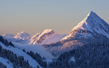 Amanecer alpino