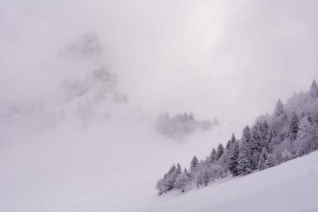 Pinceladas sobre blanco, Alpes.