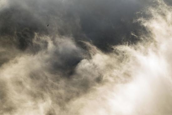 Surcando las nieblas. Navarra.