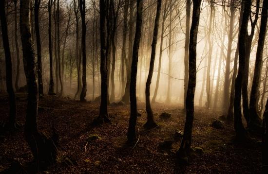 Atmosferas de misterio, Navarra.