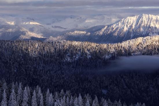 Colinas en invierno, Alpes.