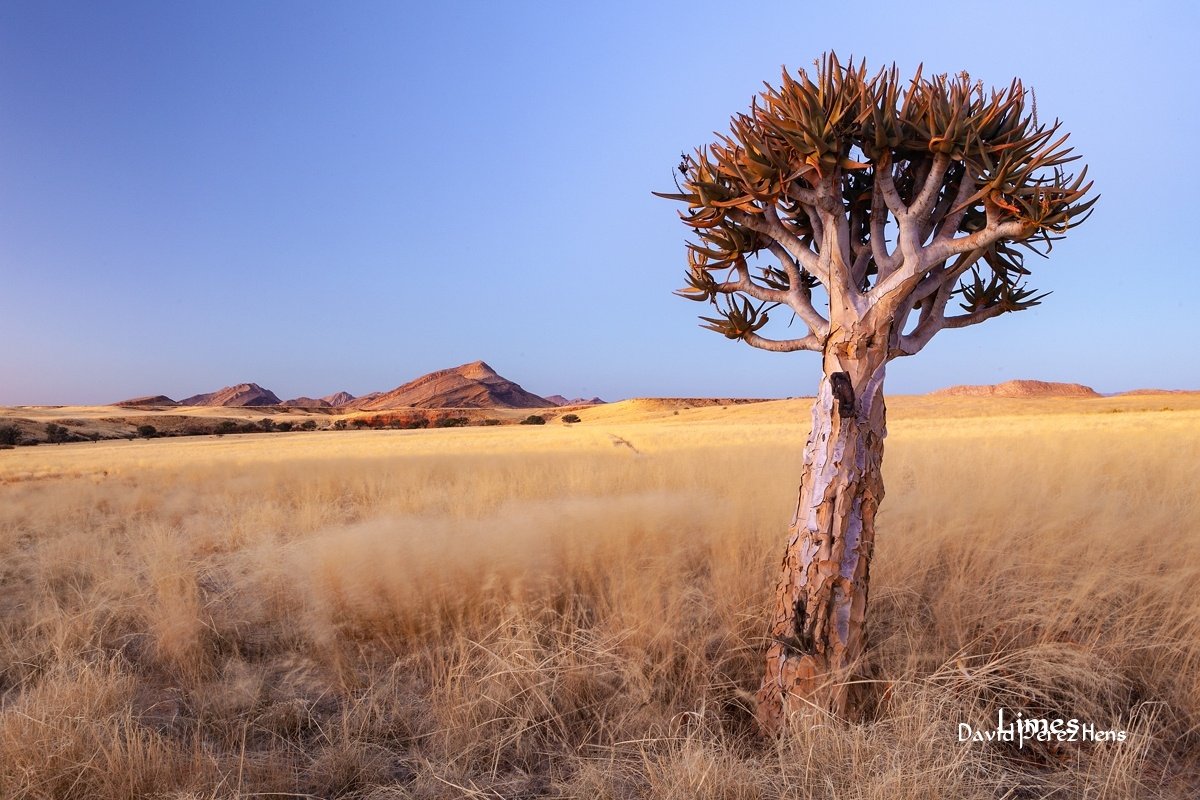 Namibia - Sudáfrica-Namibia-Botsuana-Zimbabwe - Limes , David Pérez Hens