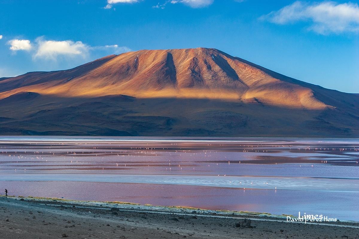 Laguna Colorada - Bolivia - Limes , David Pérez Hens