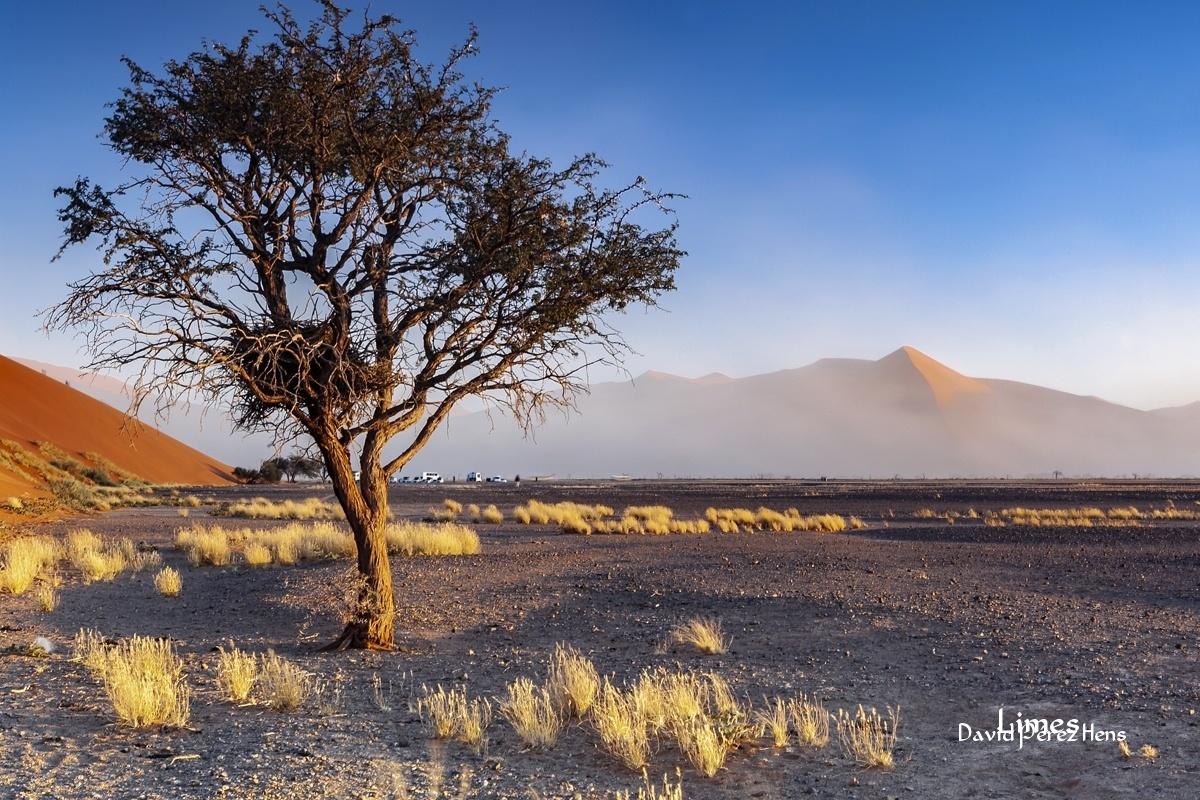 Desierto del Namib, Namibia - Sudáfrica-Namibia-Botsuana-Zimbabwe - Limes , David Pérez Hens