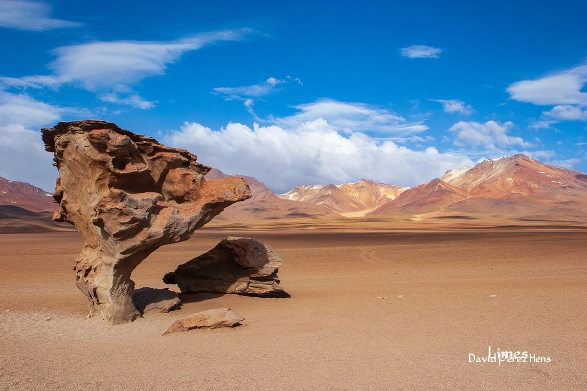 Árbol de Piedra - Bolivia - Limes , David Pérez Hens