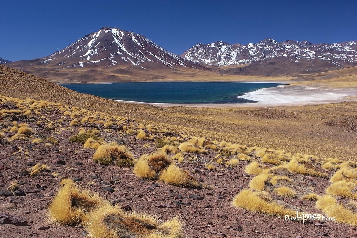 Laguna Miscanti - Chile - Limes , David Pérez Hens