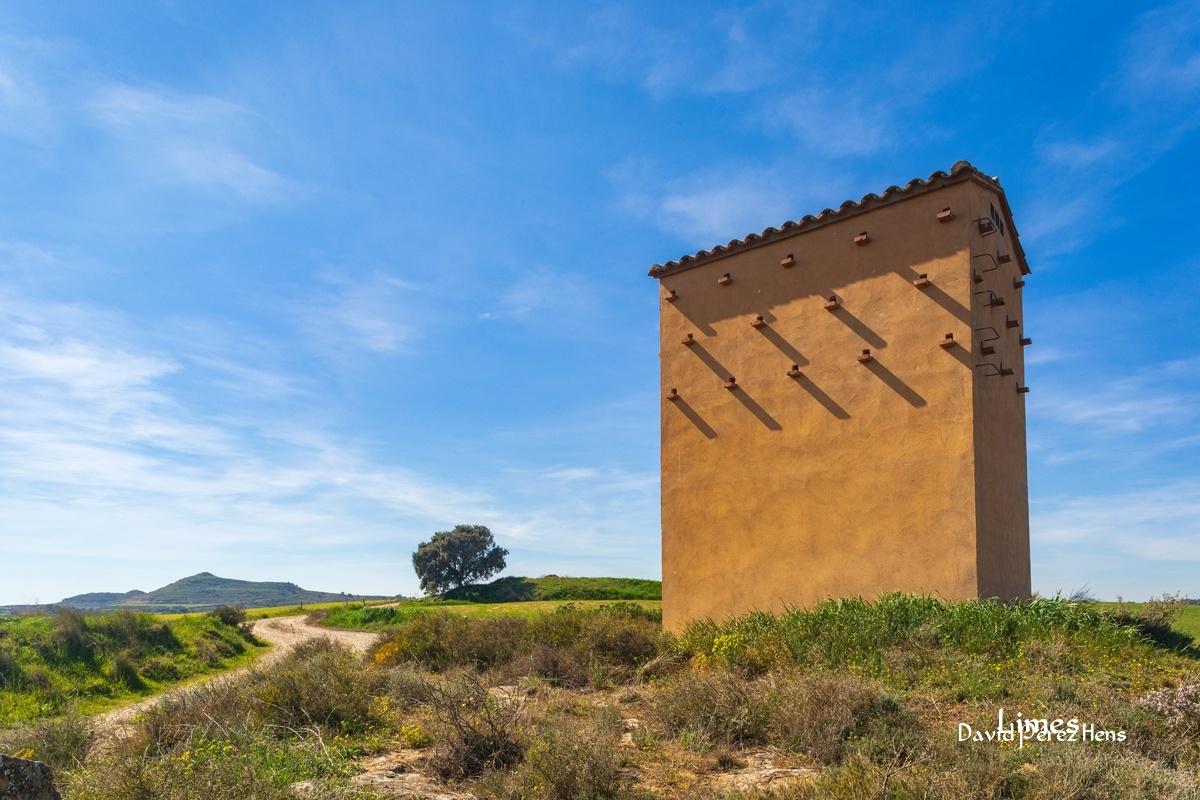 Campos de Balaguer 2019 - Secanos de Balaguer y Montgai - Campos de Balaguer y Montgai