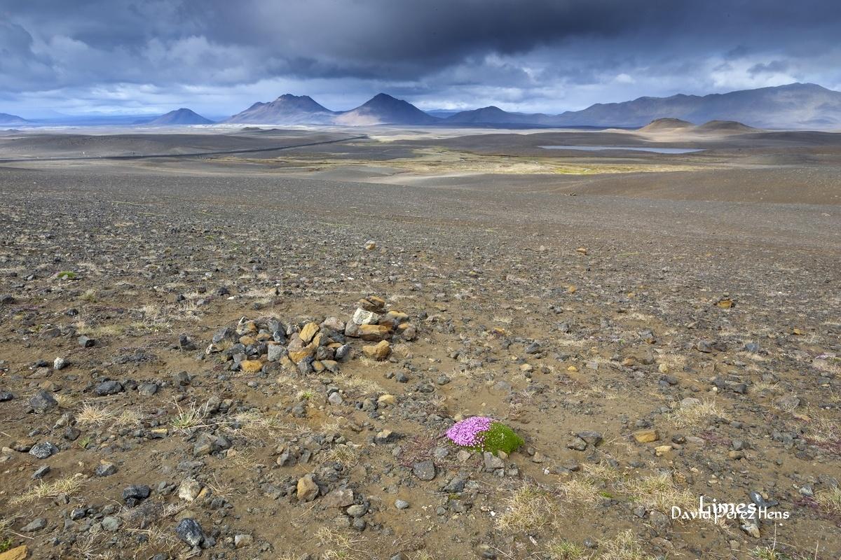 Desierto - Islandia. - Limes , David Pérez Hens