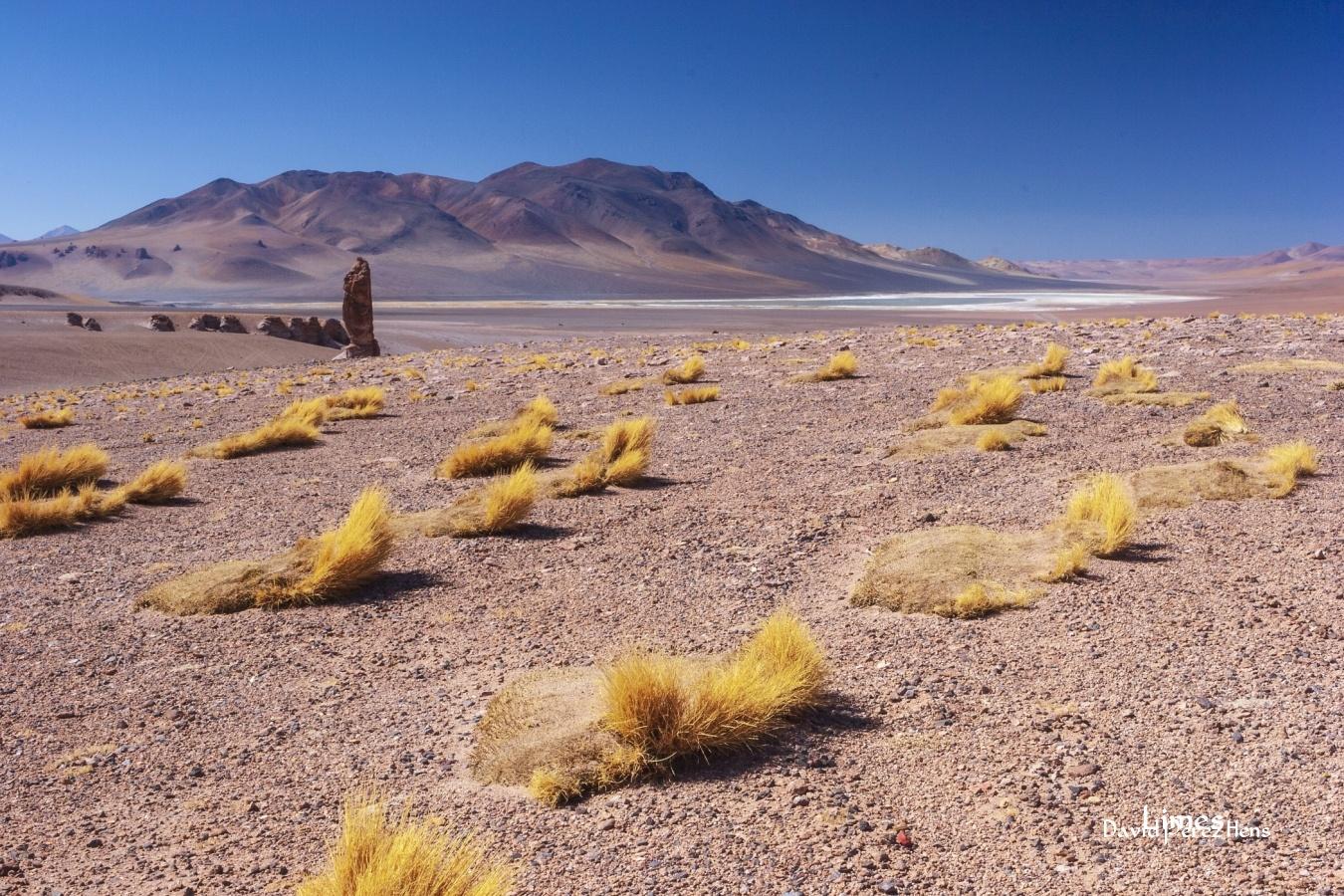 Valle de los Monjes - Chile - Limes , David Pérez Hens