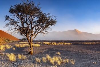Desierto del Namib, Namibia