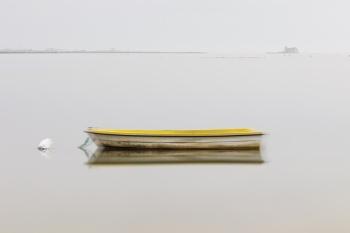 Un toque de color, Delta del Ebro