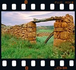 Through the lands of El Cid - Soria.