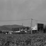 Peniscola. Caseta de Volta nº 00 Ctra Benicarló-Peniscola