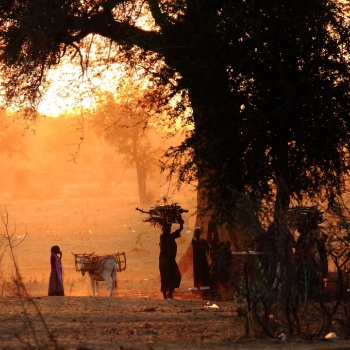 Korbo, Tchad