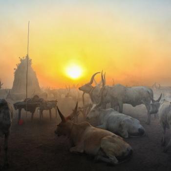 Mundari, lights and shadows between ashes
