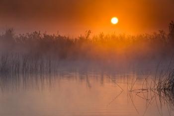 Lever de soleil dans les marais