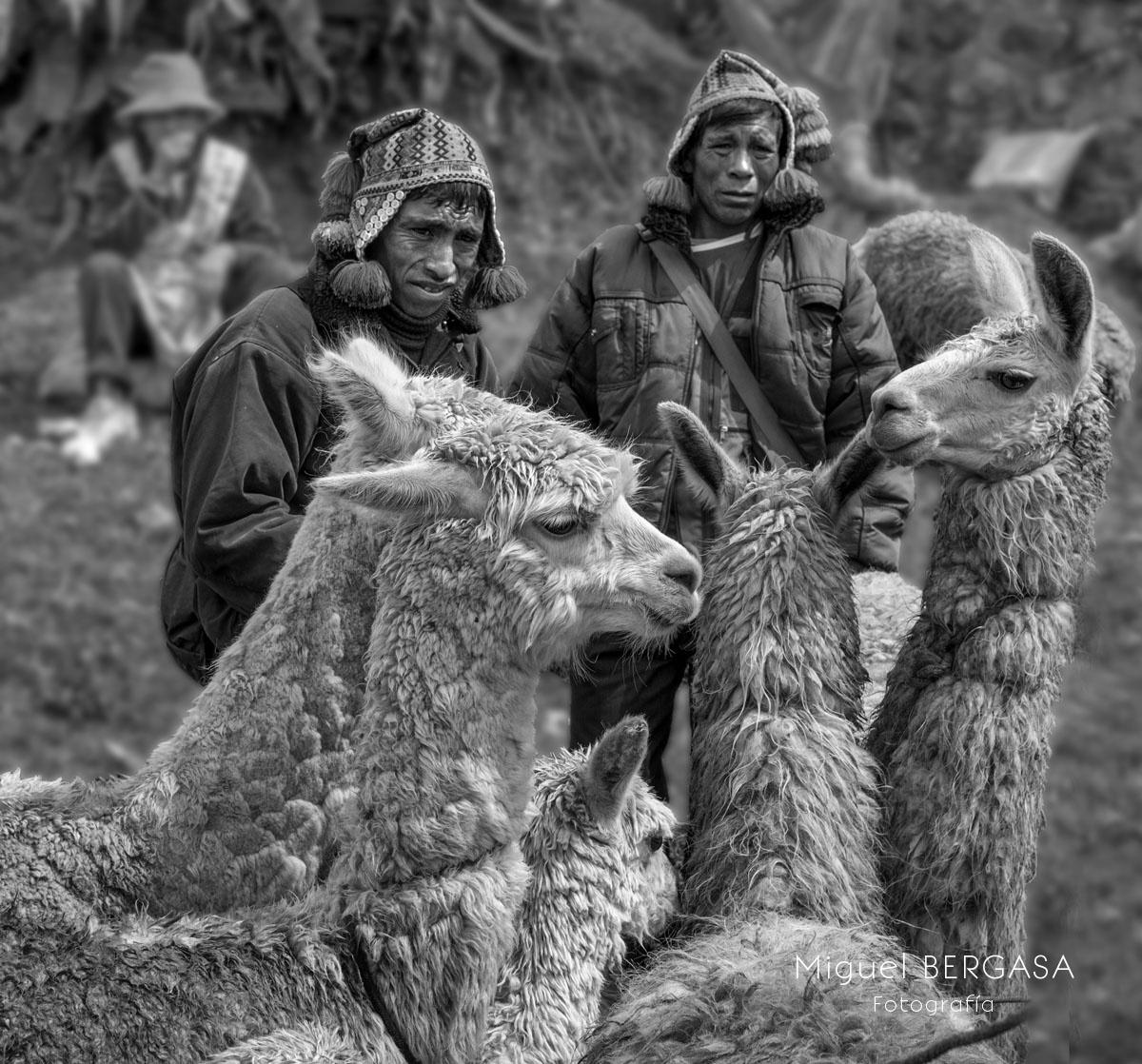Perú - Miguel BERGASA, Fotografía