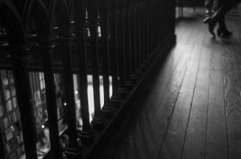 Quiet shadows | 2015 | Livraria Lello e Irmão - Porto, Portugal