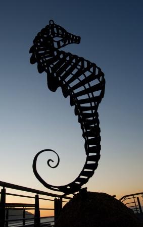 Seahorse | 2011 | A Coruña, Spain