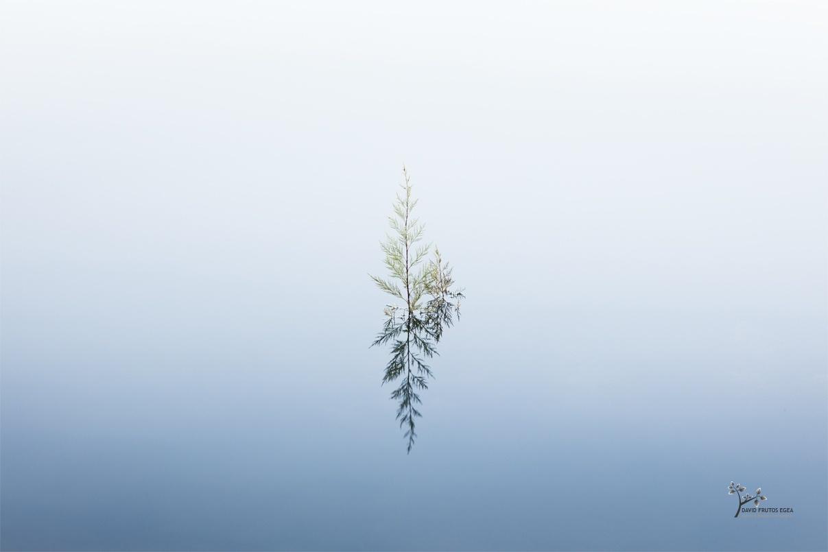 Condemnation - Color - David Frutos Egea - Color photographs