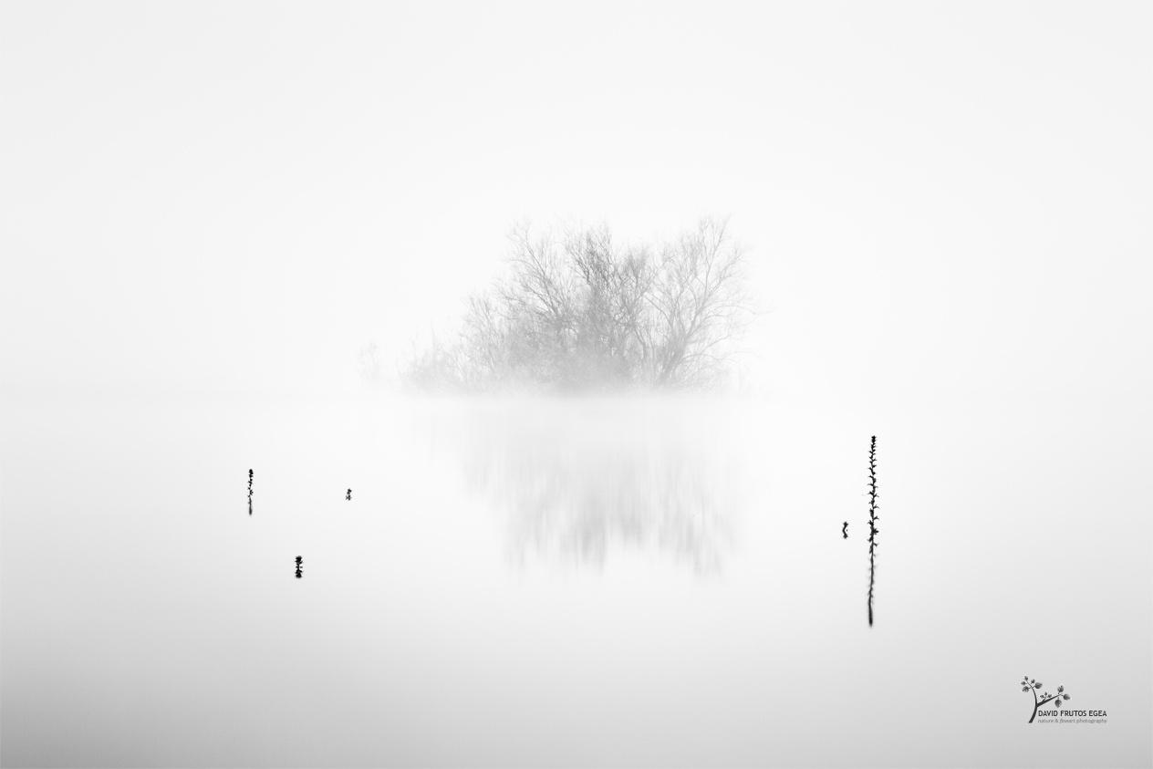 Path of thorns - B&N - David Frutos Egea   Fotografías en Blanco y Negro