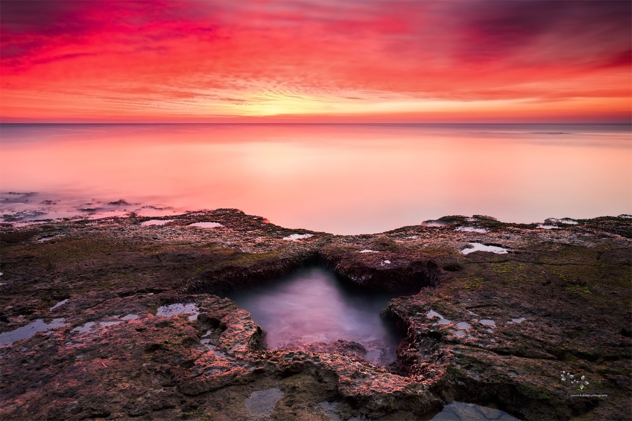 The Guest Star II - Color - David Frutos Egea - Color photographs