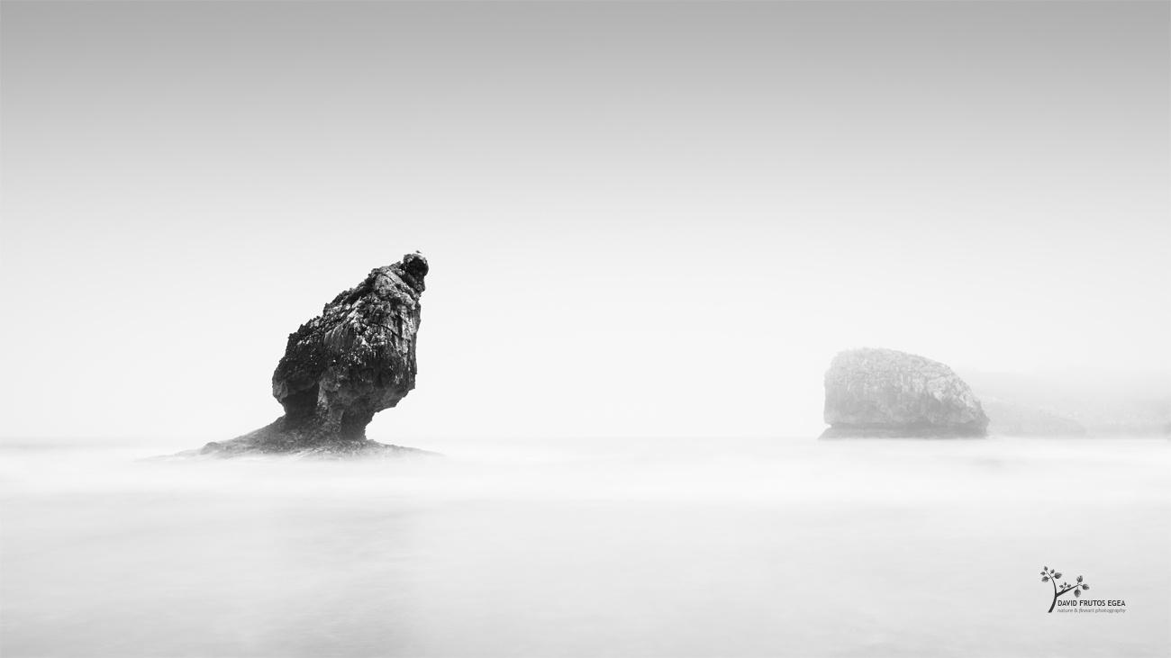 Foggy Day in Buelna II - B&N - David Frutos Egea | Fotografías en Blanco y Negro
