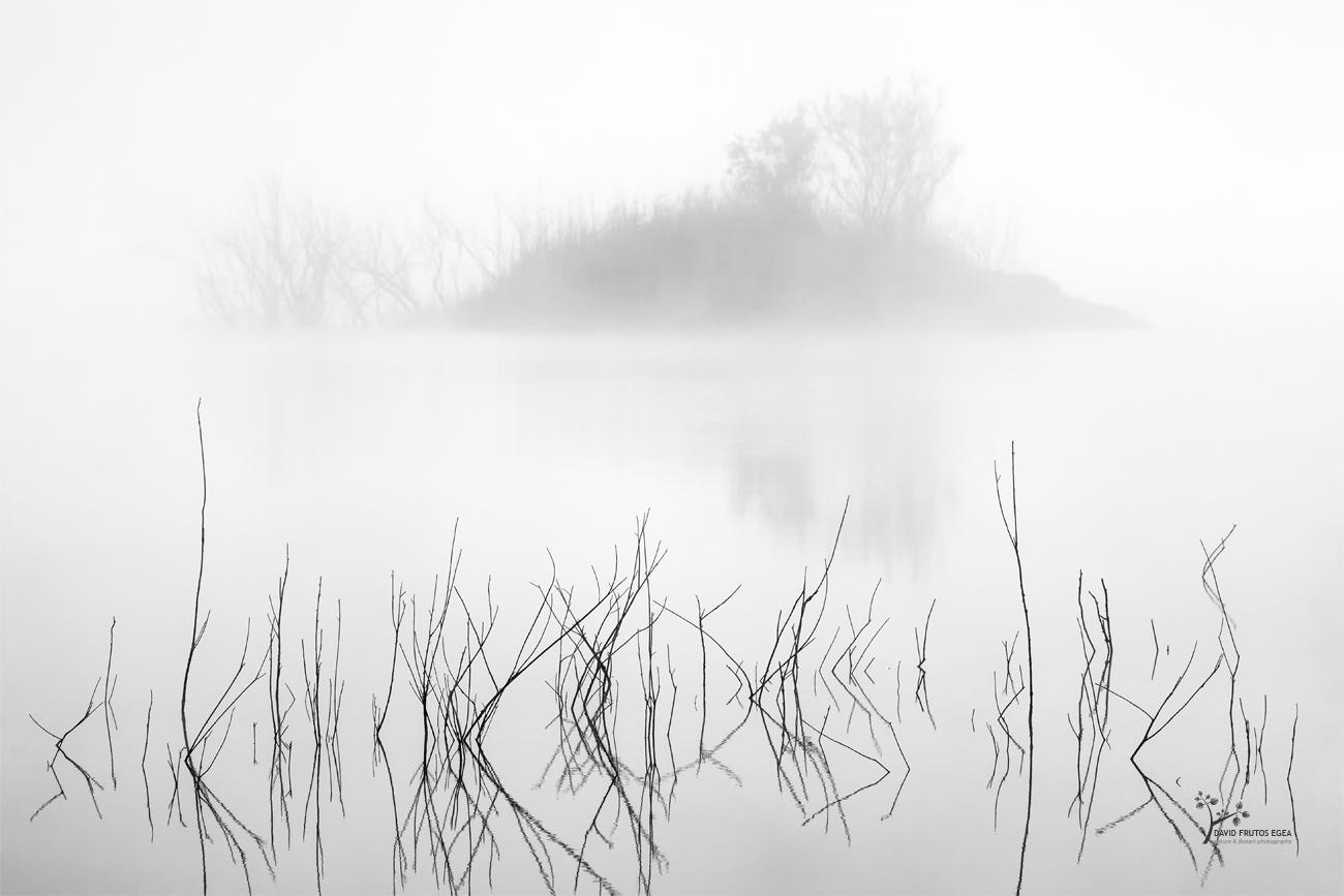 So close to life - B&N - David Frutos Egea | Fotografías en Blanco y Negro
