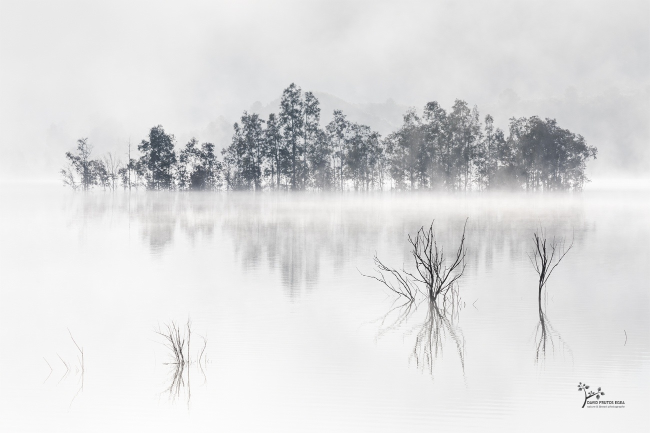 Four Souls and the Mysterious Island - Novedades - David Frutos Egea | Últimas fotografías publicadas