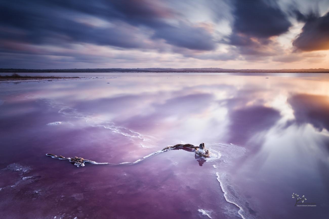 Salty World - Color - David Frutos Egea | Fotógrafías en color