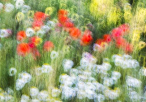Impressionist Spring