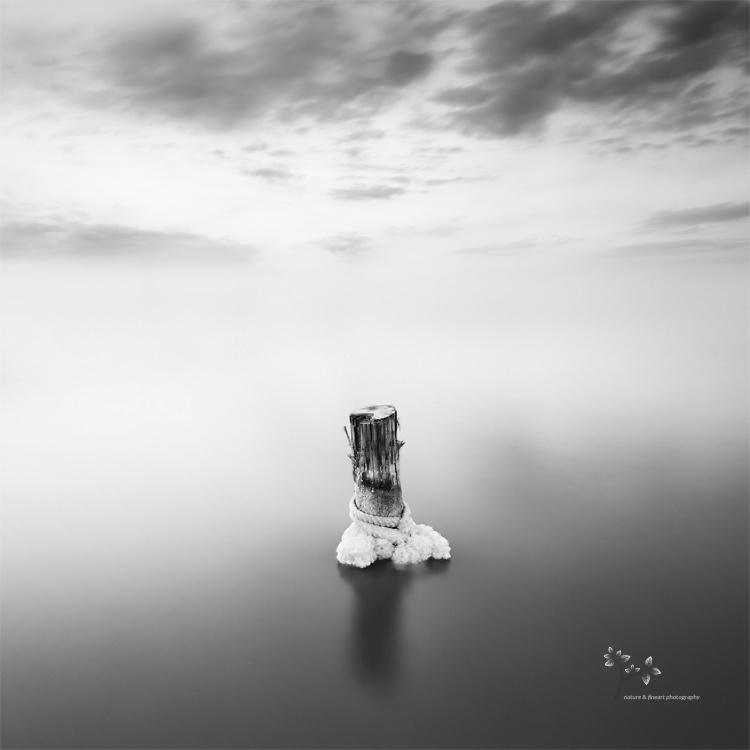 Clipped - B&N - David Frutos Egea | Fotografías en Blanco y Negro