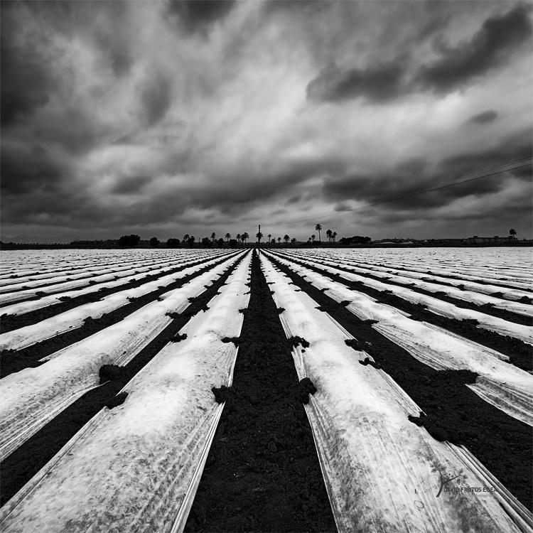 Danger, Storm!!! - B&N - David Frutos Egea | Fotografías en Blanco y Negro