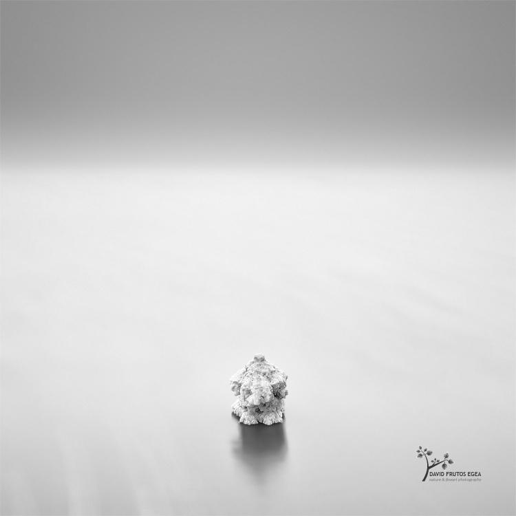 Mushroom of Salt - B&N - David Frutos Egea | Fotografías en Blanco y Negro